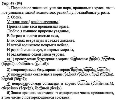 по разумовской и гдз языку леканта класс 8 русскому